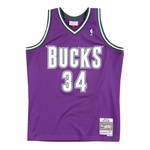 Mitchell & Ness NBA HWC Swingman Jersey 2.0 - 2000-01 / Ray Allen